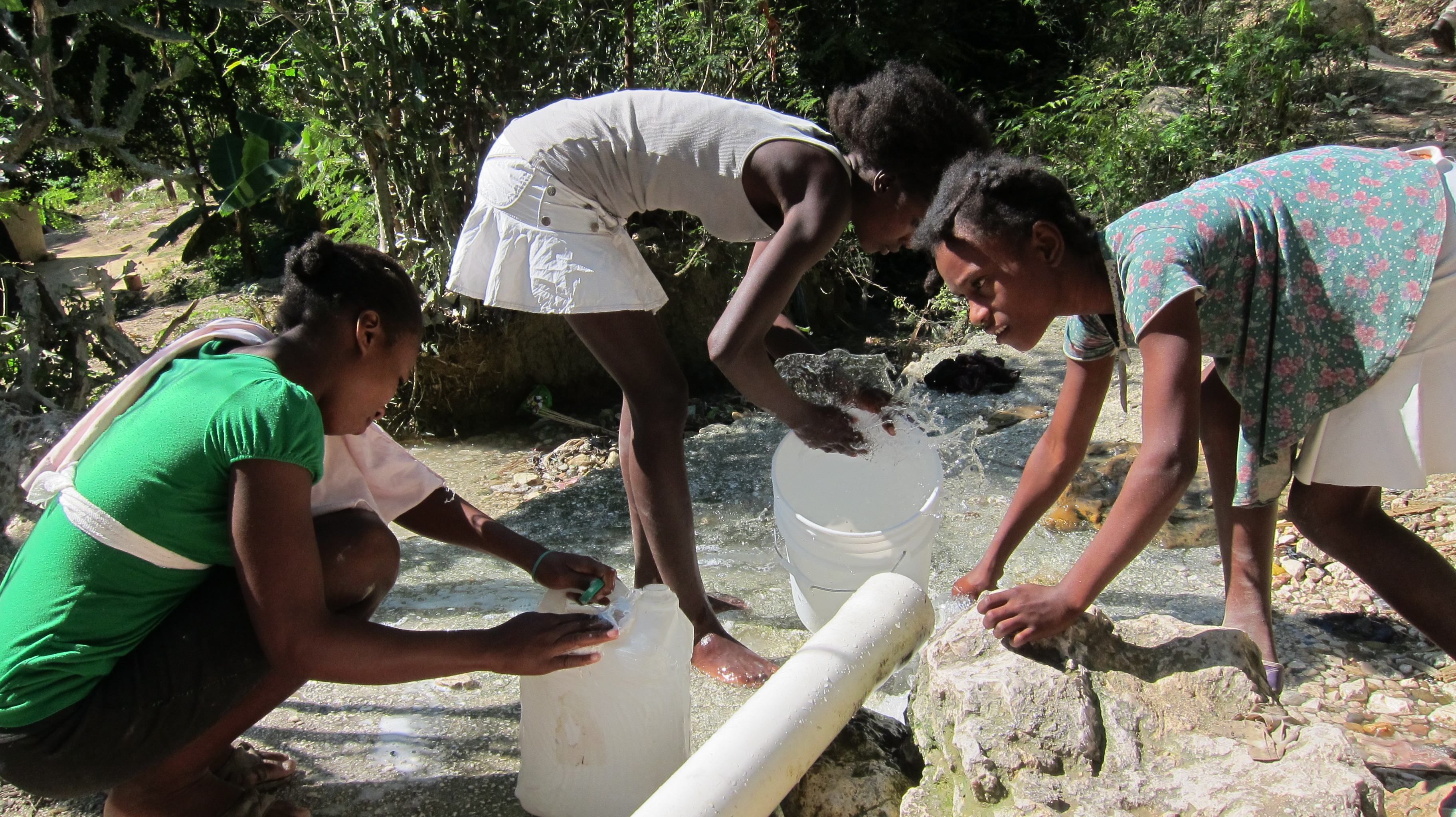 Ancient strain of cholera likely present in Haiti since colonial era